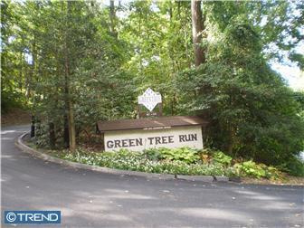 Green Tree Run